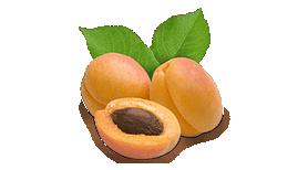 abricot-header