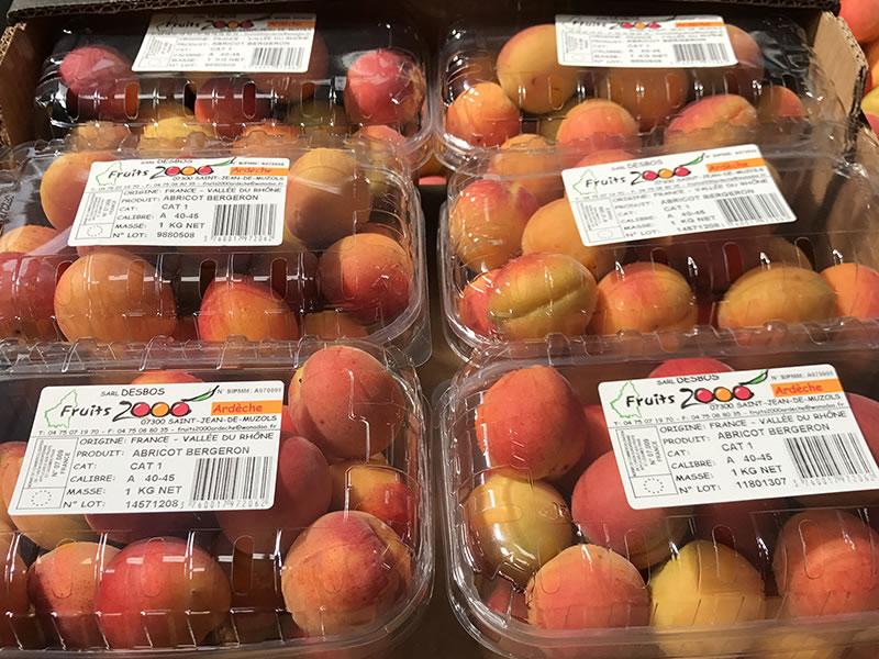 barquettes-abricots-1kg